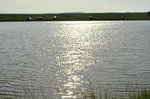 Răchitișa tó, Kővárhosszúfalu , Fotó: WR