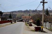 Magyarkecel , Fotó: WR