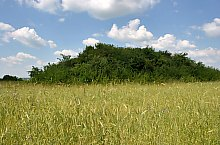 Curganii, Nusfalau , Foto: WR