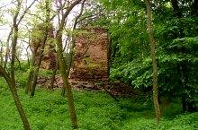 Cetatea Valcau, DN1h Rastoci-Alesd, Foto: Csók Zsolt