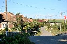 Mirsid , Foto: WR