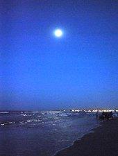 Plaja din Mamaia, Mamaia , Foto: WR