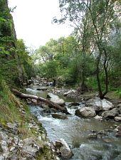 The Turzii Gorge, Turda , Photo: Cătălin Nicoară