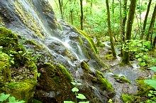 Cascada Sipote, Salciua de Jos , Foto: Csupor Jenő