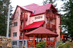 Pensiunea Ovidiu, Vartop , Foto: WR