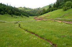 Ponoraș házikó, Lepus , Fotó: WR
