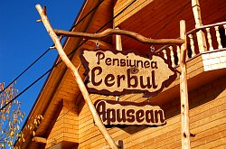 Cerbul Apusean pension, Albac , Photo: WR