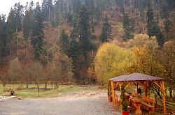 Pensiunea Casa Ursului, Vadu Motilor , Foto: WR
