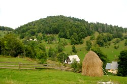 Cazare Gârda de Sus, Pensiunea Ioana, Foto: WR