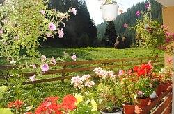 Cazare Garda de Sus, Pensiunea Marian, Foto: WR