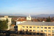 Stei , Foto: Primaria Ștei