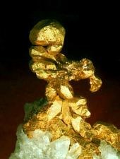 Muzeul aurului, Brad