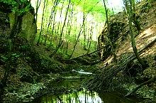 A Szoros völgy, Biharkaba , Fotó: Tőrös Víg Csaba