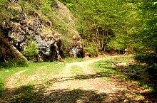 A Szoros völgy, Biharkaba , Fotó: WR