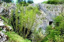 Vașcău, Peștera Câmpenescă, Foto: WR