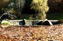 Lacul Vida, Foto: Tőrös Víg Csaba