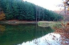 Lacul Vida, Foto: WR