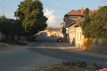 Tinca , Foto: WR