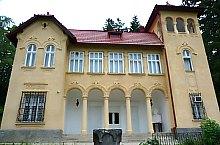 Goga castle, Ciucea , Photo: László János