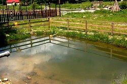 Octavia pension, Lake Leșu , Photo: WR