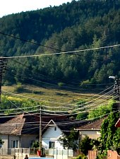 Vlaha , Photo: WR