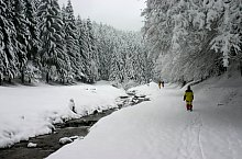 Canionul Sapte Scari, Sacele , Foto: Sorin Stanciu