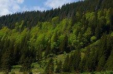 Traseul Piscul Negru - Lacul Caltun, Muntii Fagaras, Foto: Mihai Petrescu