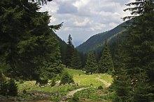 Cabana Valea Sâmmbetei - Șaua Răcorele, Foto: Bereczki Barna
