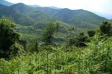 Sebeș Olt - Suru chalet hiking trail, Făgăraș mountains, Photo: Marius Mihai