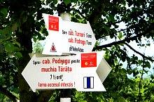 Traseul Victoria-Cabana Podragu prin izvorul La Sipote, Muntii Fagaras, Foto: Marius Mihai