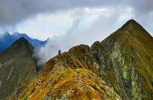 Viștea Mare peak, Photo: Dénes László
