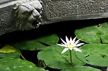 Gradina botanica, Jibou, Foto: Luidort Péter