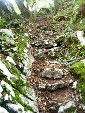Traseul Circuitul versantului stang, Muntii Padurea Craiului, Foto: WR