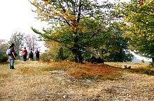 Lunca Acră, Foto: Vasile Coancă