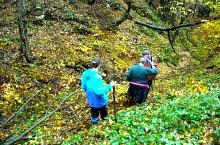 Lesi tó vége - Mézedi Czárán barlang jelzett turistaút, Királyerdő, Fotó: WR