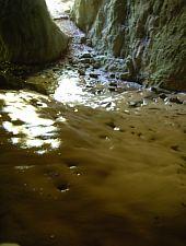 Moanei cave, Șuncuiuș , Photo: WR