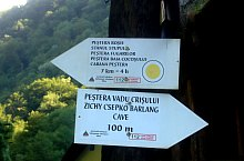 Yellow tour hiking trail, Padurea Craiului mountains, Photo: WR