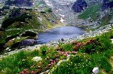 Lacul Florica, Muntii Retezat, Foto: Emilia Bota