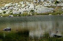 Lacul Pietrele, Muntii Retezat, Foto: Sorin Nicolas