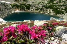 Lacul Stevia, Muntii Retezat, Foto: Mihai Păcuraru