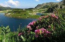 Viorica tó, Retyezát hegység., Fotó: Mihai Păcuraru
