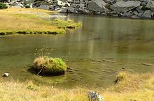 Lacurile Ciumfu, Muntii Retezat, Foto: Emilia Bota