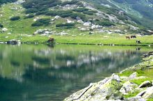Gales tó, Fotó: Florin Hălăștăuan