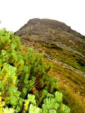 Climb to Peleaga, Photo: Radu Dârlea