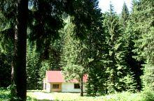 Refuge Stănuleți, Photo: Florina Crișan