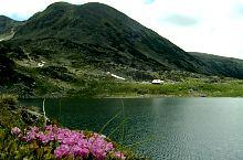Bucura tó, Fotó: Mihai Bursesc