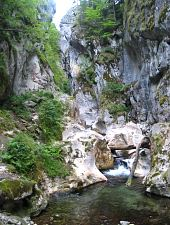 Buții gorge, Retezat mountains·, Photo: Lucian Canacheu