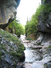 Buții gorge, Retezat mountains·, Photo: APNR