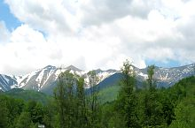 Retezatul Mic din Câmpul lui Neag, Foto: Florina Crișan