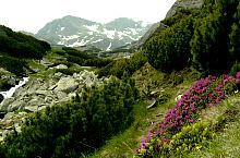 A glaciáris küszöb, Fotó: Bursesc Mihai